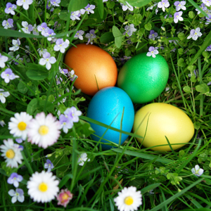 Egg-cellent Activities from our Northampton Hotel this Easter